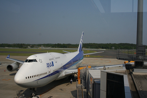 Ana Airline Japan