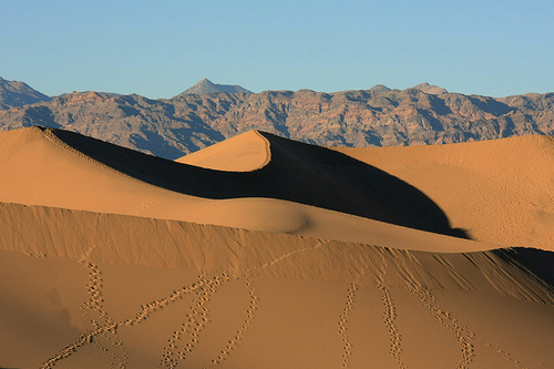 Death Valley - Mesquite Sand Dunes